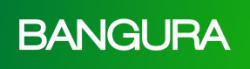 Bangura Solutions